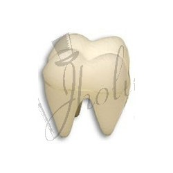 Esponja de Diente (Sponge Tooth)