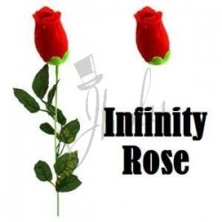 Rosa Infinita (Infinity Rose)