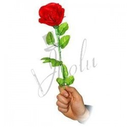 Rosa Realista (Realistic Rose)